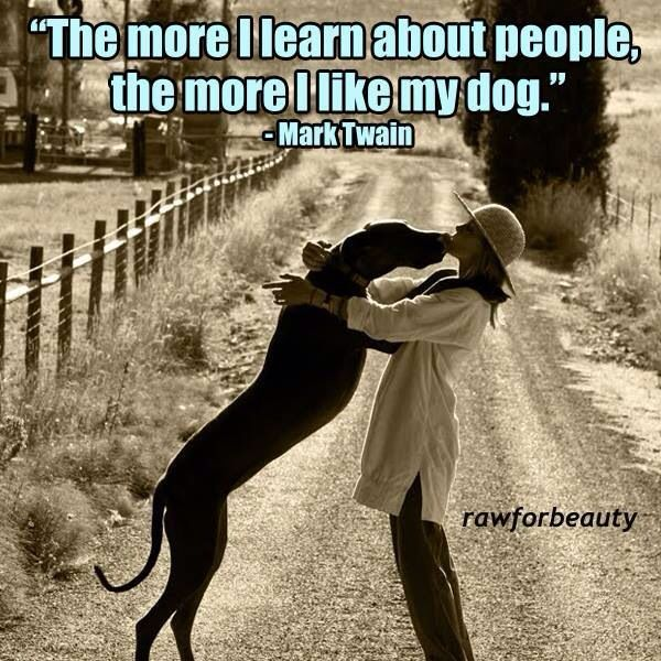 The More I Learn About People The More I Love My Dog Mark Twain