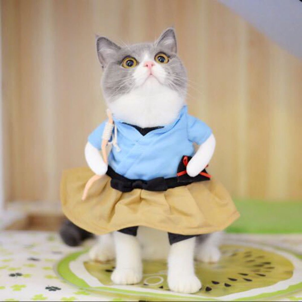 Cheap Cat Clothing Buy Directly From China Suppliers New Funny