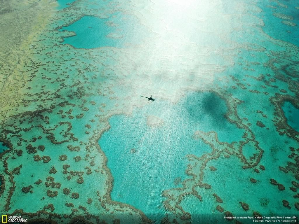 An aerial view of the Great Barrier Reef: