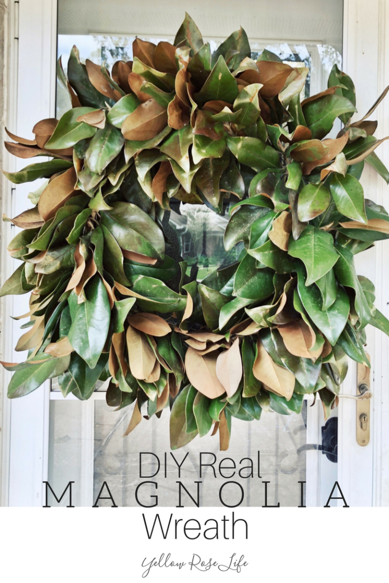 DIY Real Magnolia Wreath Magnolia wreath, Magnolia leaf