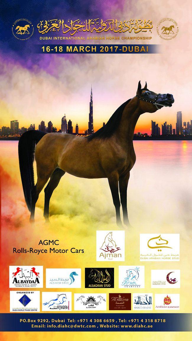بطولة دبي الدولية ٢٠١٧ للجواد العربي Horses Arabians Animals