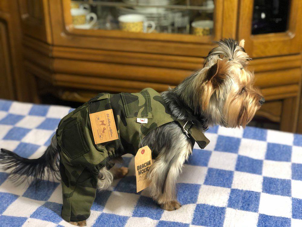 Photo of 5,57 € | Perro Mascota Perro Jeans Ropa Pantalones Chihuahua Yorkshire Terrier Ropa para perros pequeños Mono Mamelucos Dropshipping. Monos y mamelucos exclusivos de Home & Pets en AliExpress