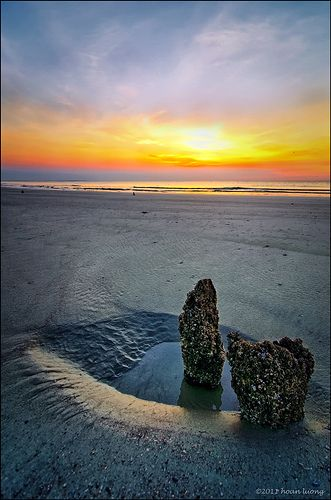Golden hour - calm, peace, tranquility, serenity, relaxation, passive, silence, contemplative - Hunting Island State Park, SC