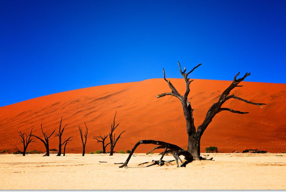 Dead Vlei Namibia | Dead Vlei, Namibia | OUT OF AFRICA ...