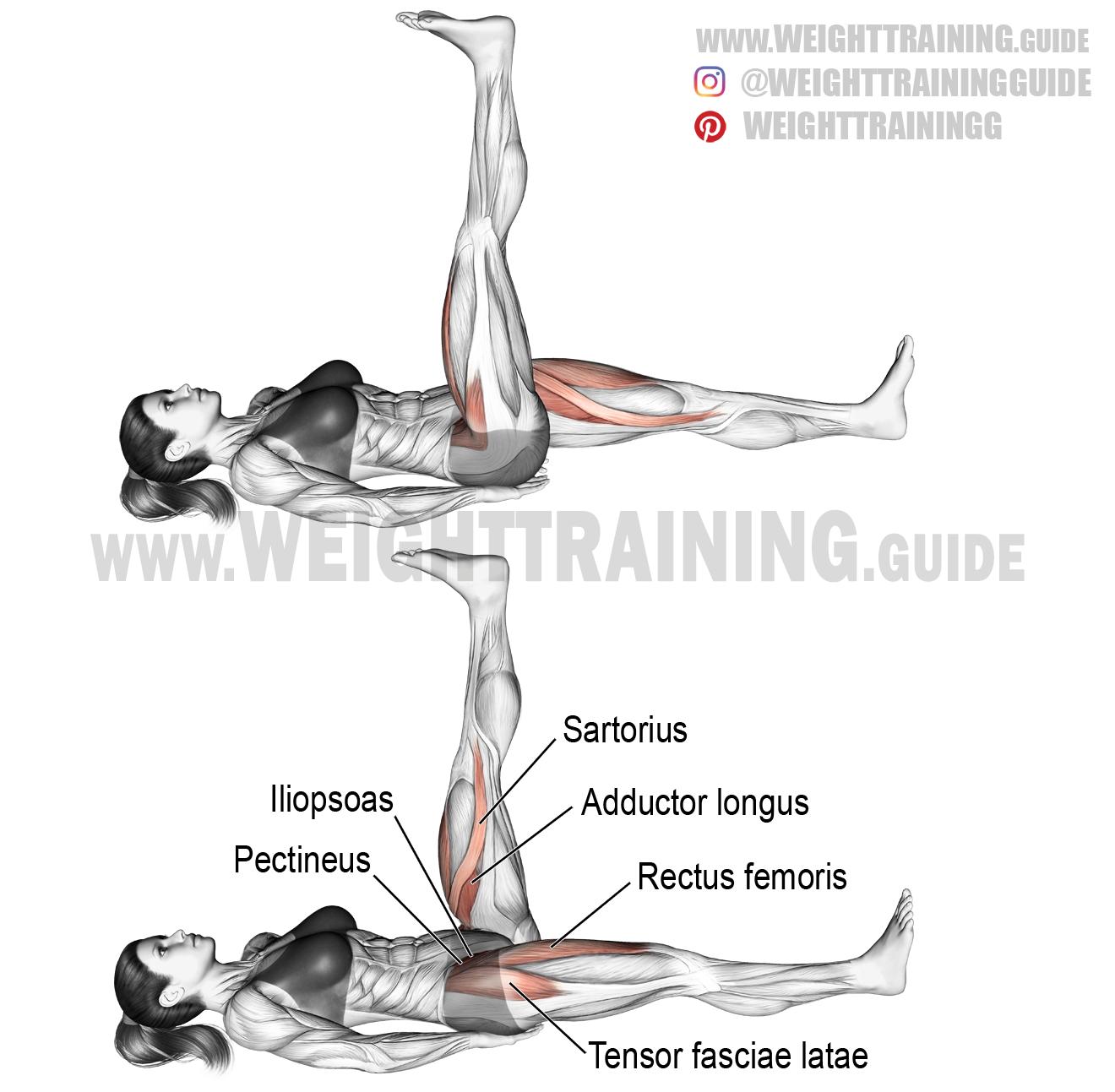 Lying Alternating Leg Raise Instructions And Video