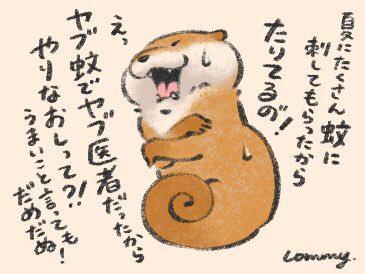 可愛い嘘のカワウソ カフェ池袋9 27まで 名古屋10 4まで on twitter cute drawings cute baby animals artsy