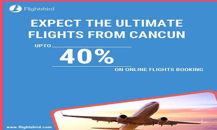 You Have To Be Quite Serious In Finding The Ultimate Service Provider Where You Can Find The Best Flights From Best Flights Online Flight Booking Cheap Flights