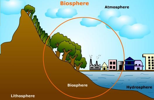 Detailed illustration of biosphere with diagram biosphere detailed illustration of biosphere with diagram ccuart Image collections