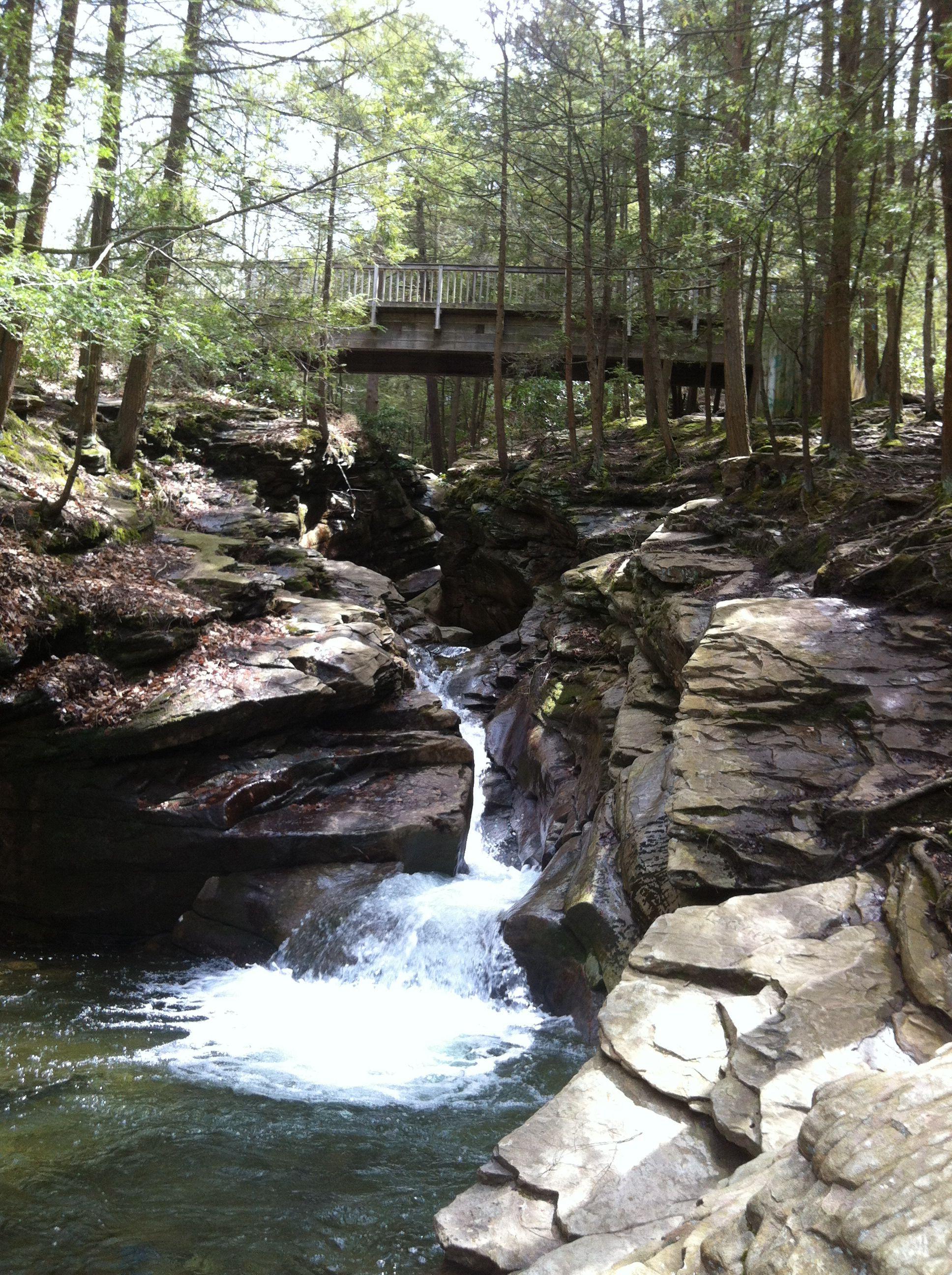 Bear Creek Pa >> Seven Tubs Nature Area Bear Creek Pa Hiking Spots