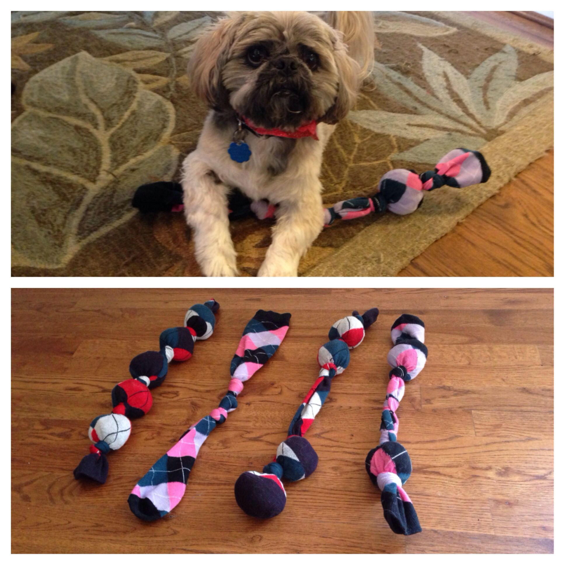 Diy Dog Toys From Socks Just Shove Some Socks In Another Sock