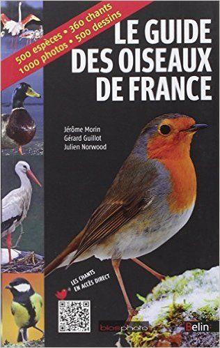 Amazon Fr Le Guide Des Oiseaux De France Jerome Morin Julien Norwood Gerard Guillot Livres Oiseaux De France Animales Oiseaux
