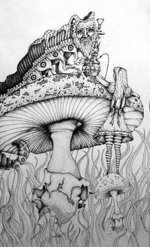 Alice in Wonderland   theres a fungi among i ....   Pinterest   País ...