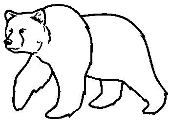 Bear Drawing Pictures (Good Galleries)