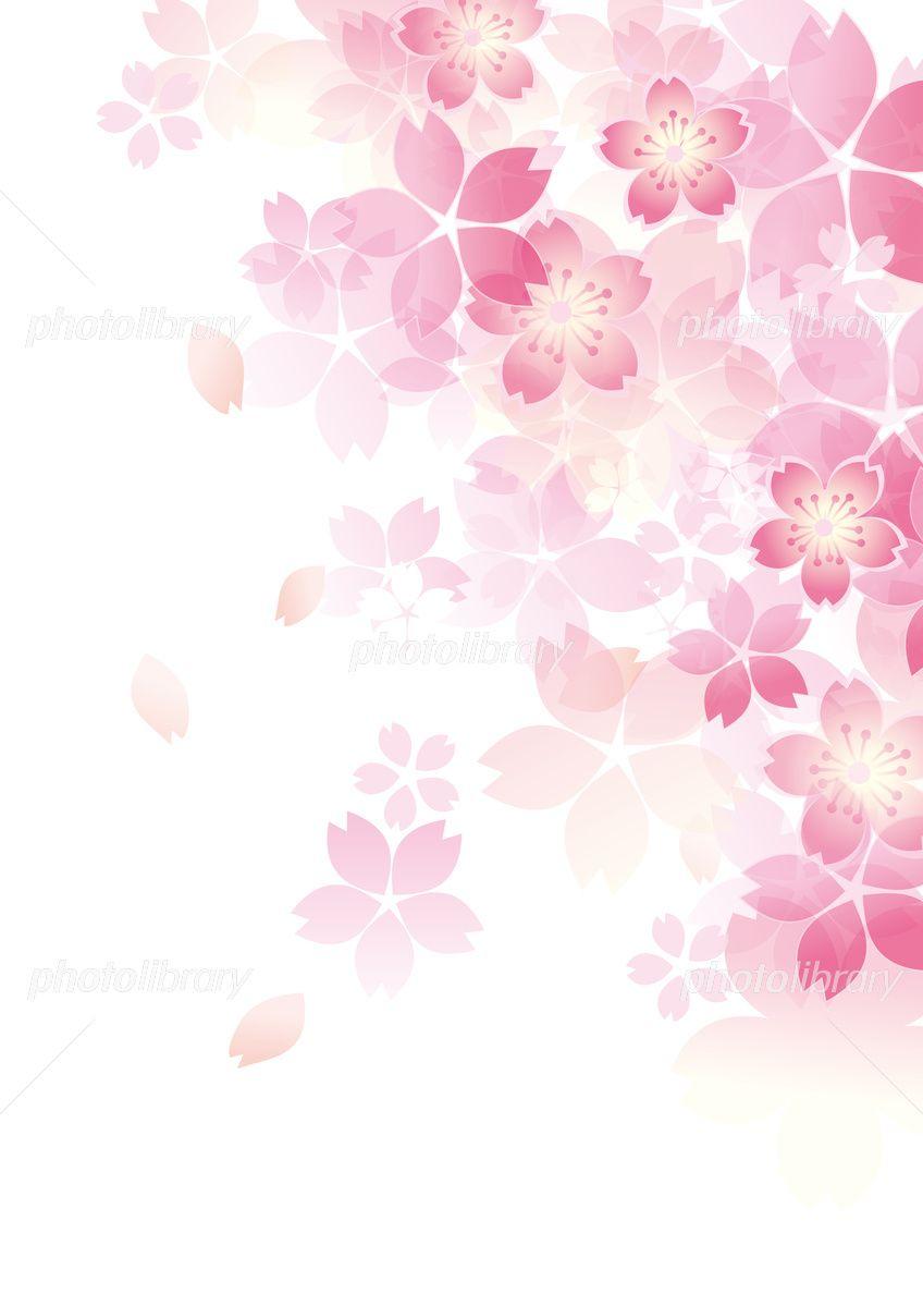 和柄桜 和風六 イラスト素材 5435901 フォトライブラリー
