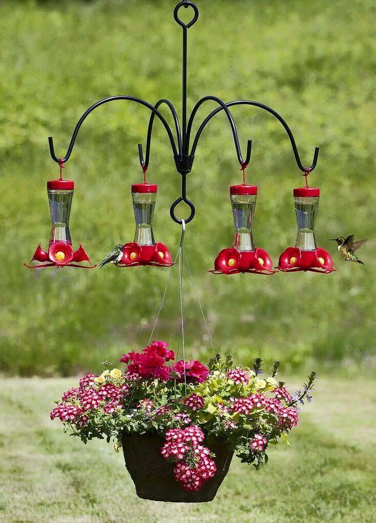 Hummingbird feeder chandelier yard and garden pinterest hummingbird feeder chandelier mozeypictures Gallery