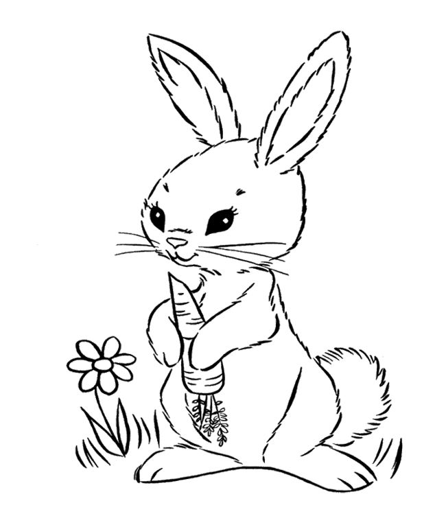 Bunny holding a carrot coloring page for kids
