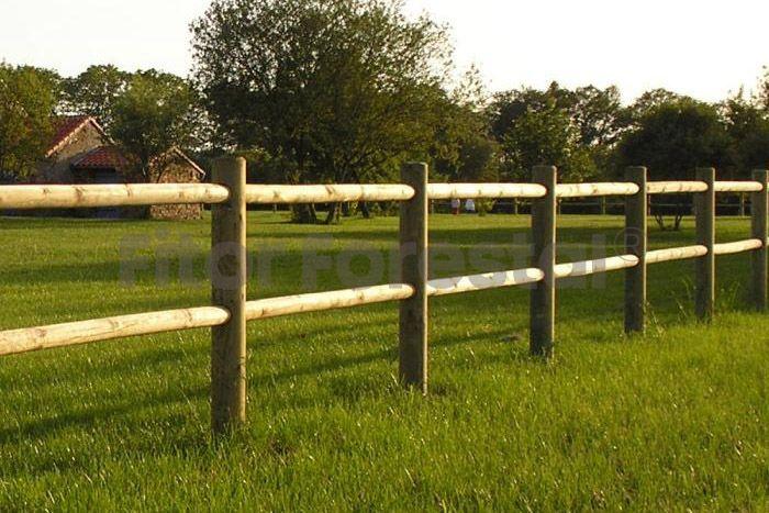 Valla Tejana Con Agujeros Cerca De Bambú Cercas De Madera Entrada De Campo