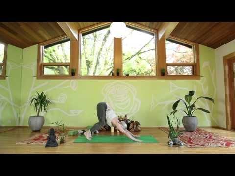 beginner vinyasa yoga flow with carling harps free yoga