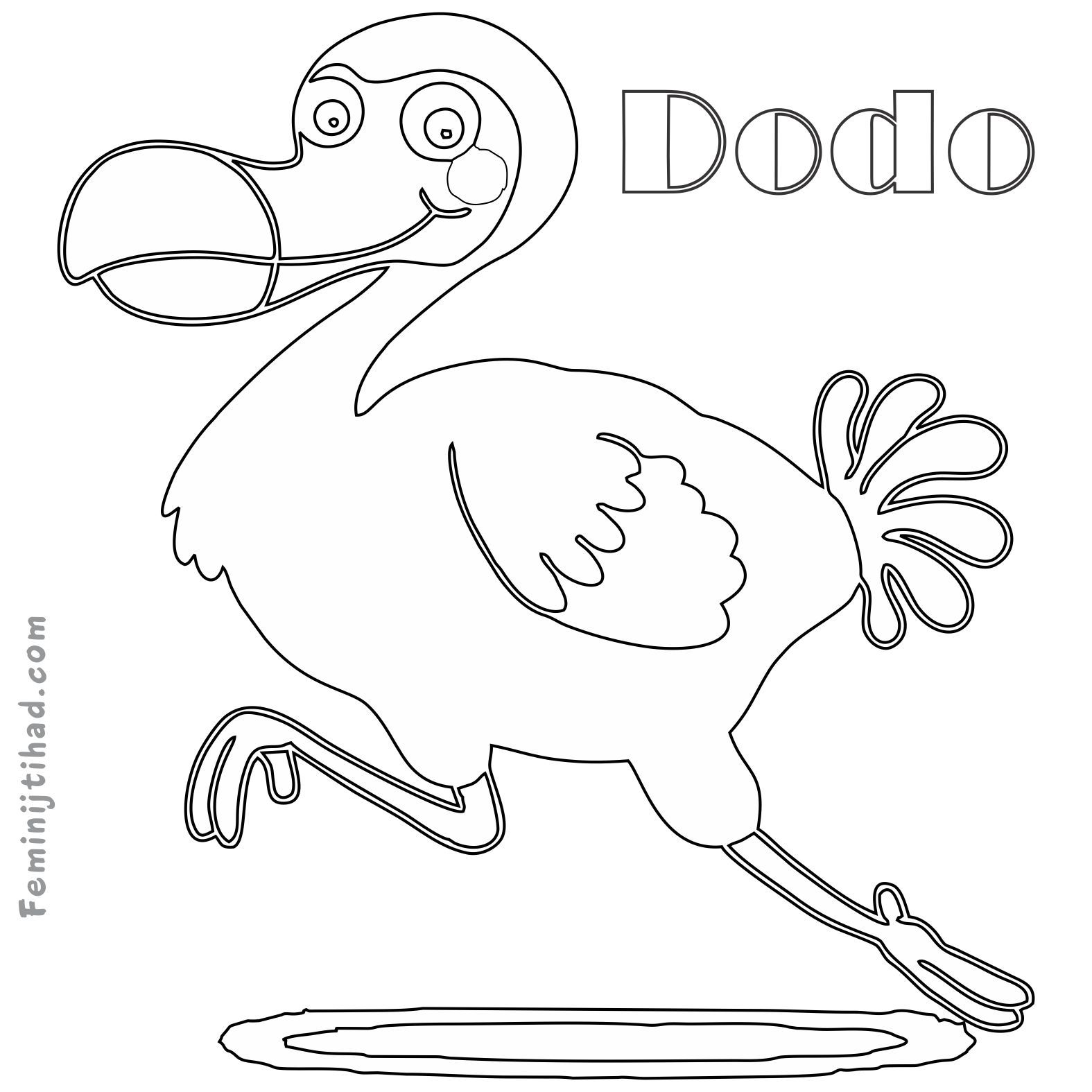 Dodo Outline With Images Bird Coloring Pages Bird Outline