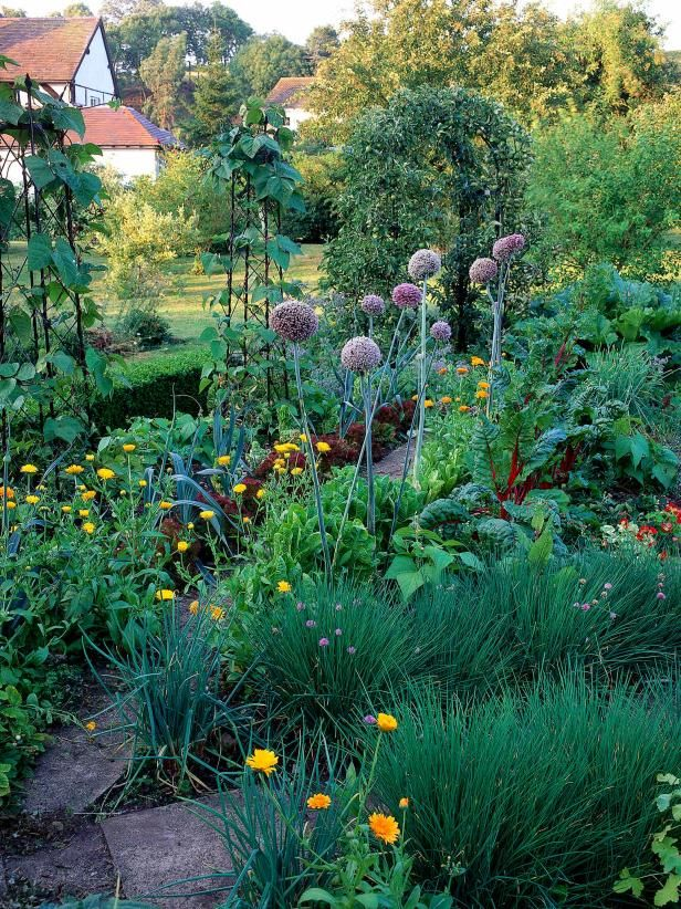 14 Gorgeous Kitchen Gardens is part of Organic vegetable garden - Just because you are growing veggies, herbs and fruit, doesn't mean you have to settle for an unappealing garden look  HGTV Gardens offers pointers on growing a pretty kitchen garden