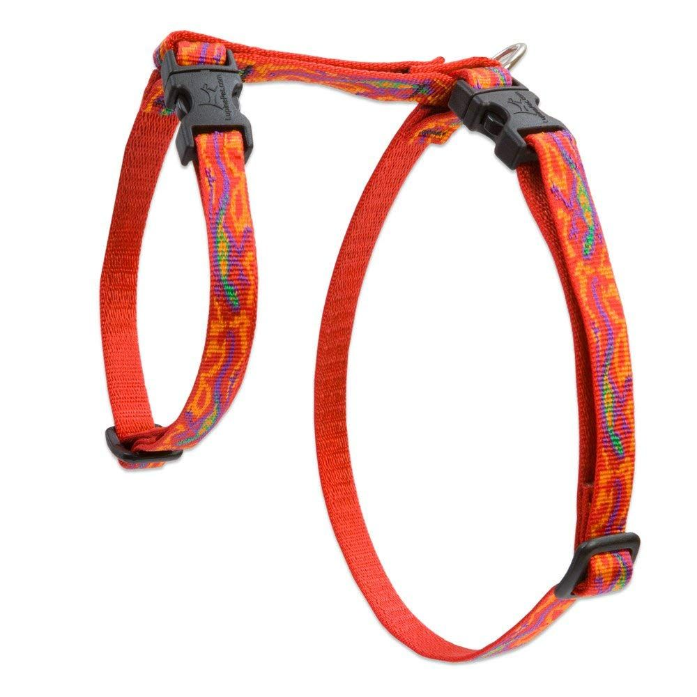 LupinePet Originals 1/2' Go Go Gecko 9-14' H-style Harness for Small