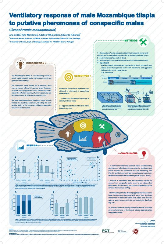 Scientific Poster By Osvaldo Branquinho Via Behance Posters De Ciencias