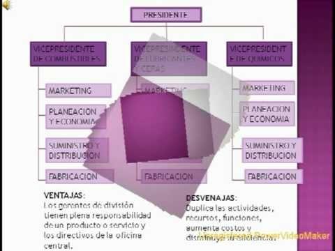 Pin De Cecii En Estructuras Organizacionales Pinterest