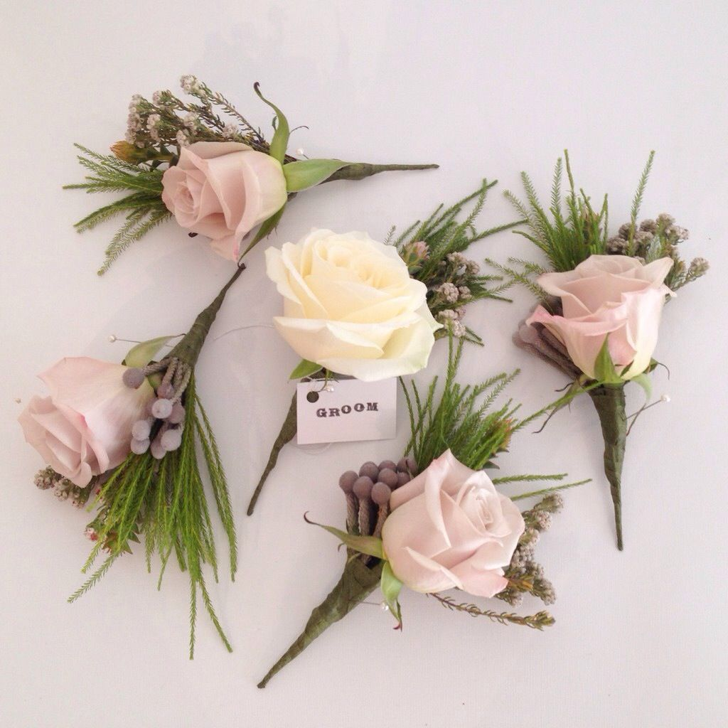 Dusky Pink Menta Rose And Brunia Berry Buttonholes. Surrey