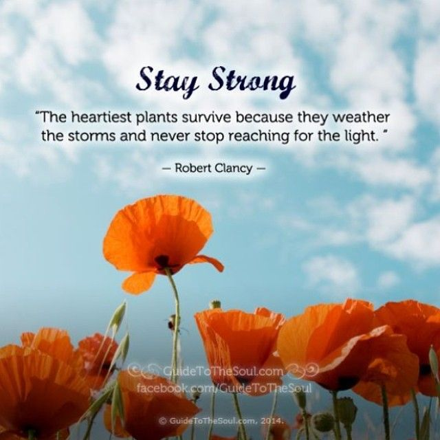 Healing Inspirational Quotes inspirational quotes for healing and strength   Google Search  Healing Inspirational Quotes