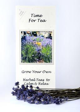 Grow Your Own Herbal Tea Seed Collection a delightful gardening gift from Greenside Up