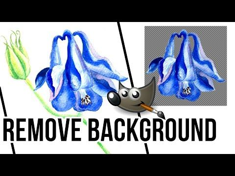 How To Remove Background In Gimp 2 Youtube Gimp Tutorial Colorful Backgrounds Gimp