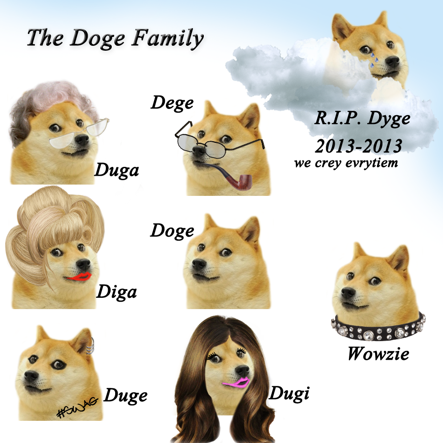 Hi there, here is a typical doge family, such unite, very
