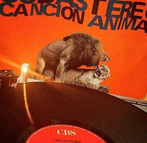 #cancionanimal #sodastereo #1990