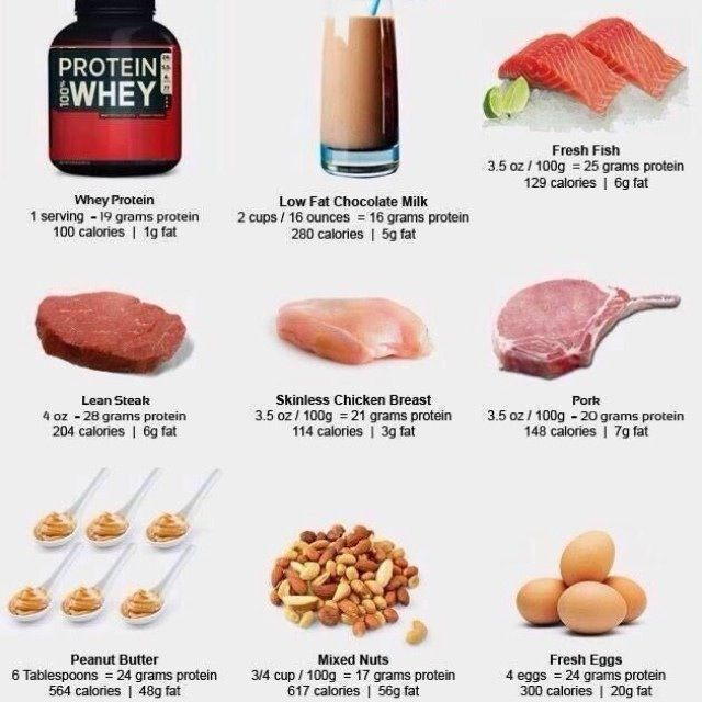 Protein Grams Per Day To Build Muscle