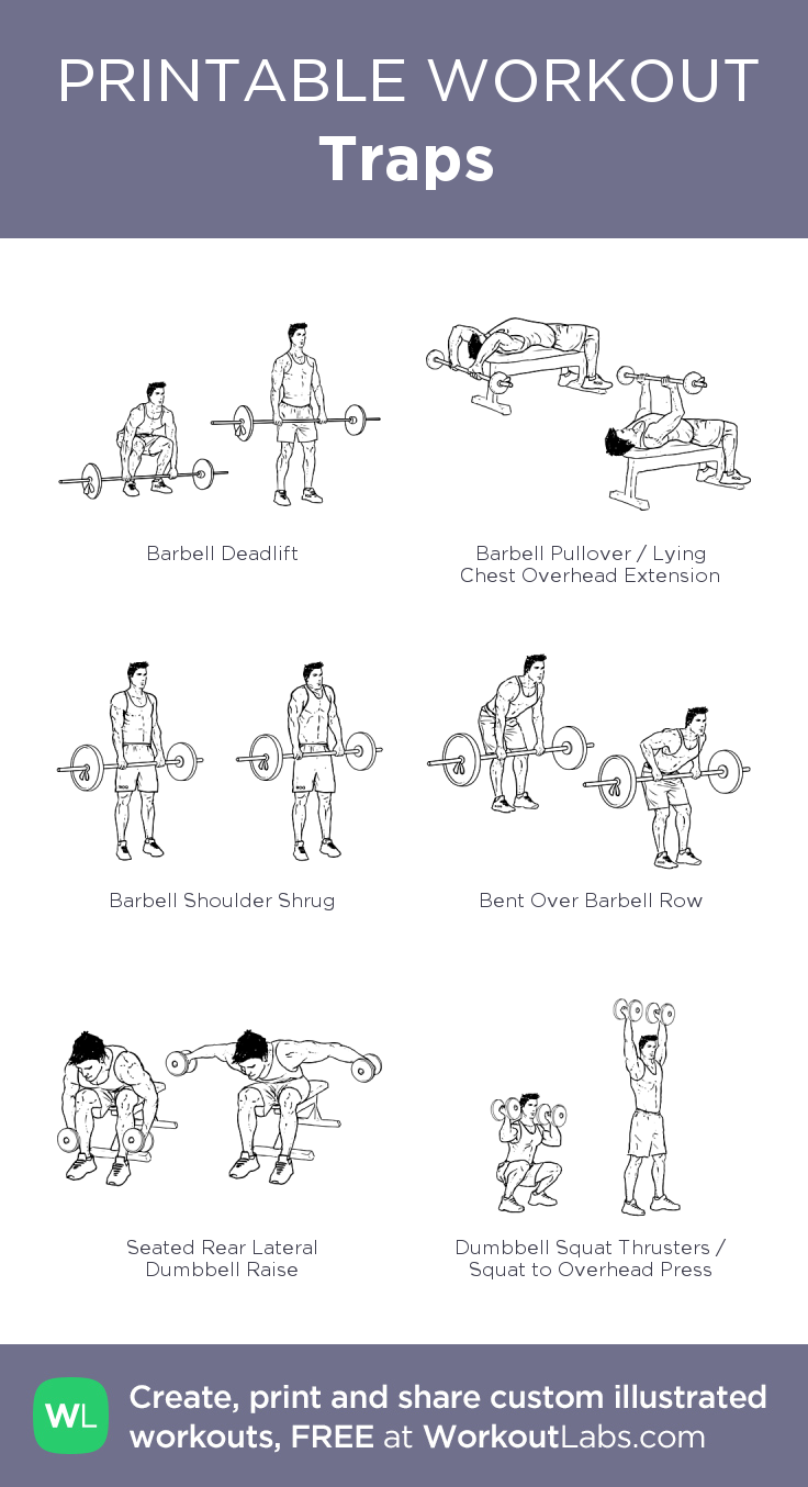 Barbell And Dumbbell Workout Routine Pdf | EOUA Blog