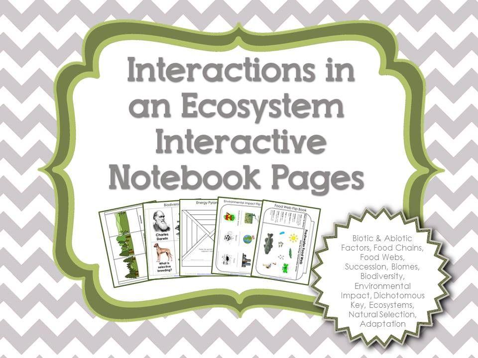 interactive science grade 4 pdf