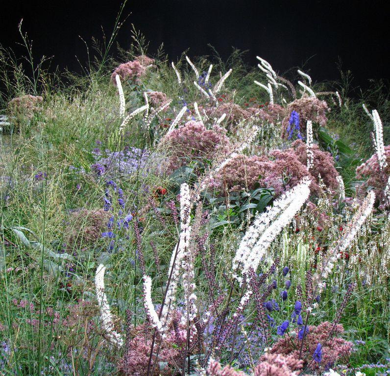 Piet Oudolf Ist Ein Preisgekronter Garten Designer Aus Den Niederlanden Und Er Hat Wohl Jede Dieser Auszeichnungen Verdie Garten Staudengarten Trockengarten