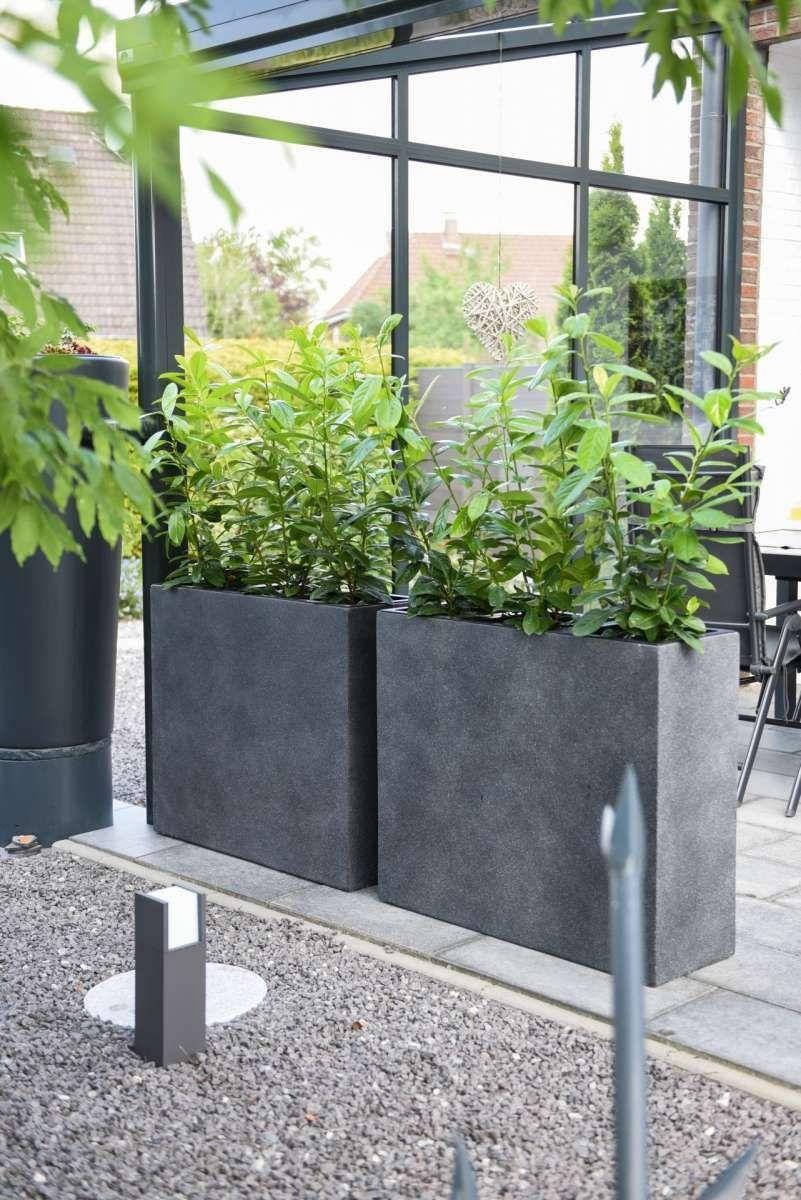 4er Set Pflanzkubel Raumteiler Beton Elemento Grau Garden
