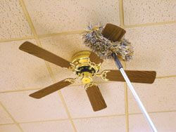 Ceiling fan cleaning brushes are a good piece of equipment to make ceiling fan cleaning brushes are a good piece of equipment to make use of to completely clean fan rotor blades aloadofball Image collections