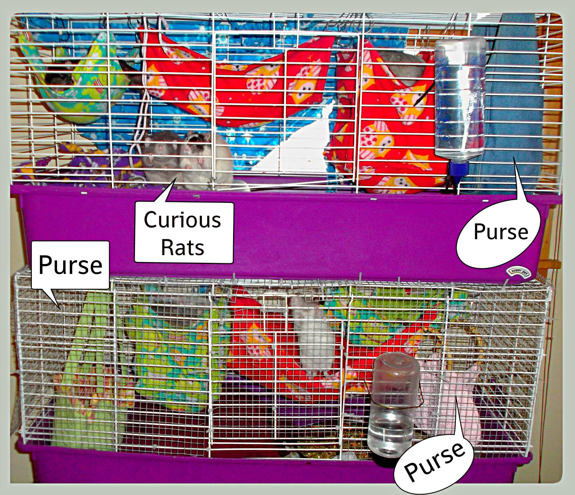 The cages i buy fabric thrift store purseshandbags and hang them