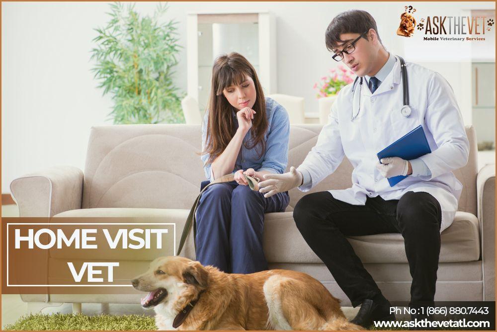 Choose Home Visit Vet Ask The Vet in 2020 Mobile vet