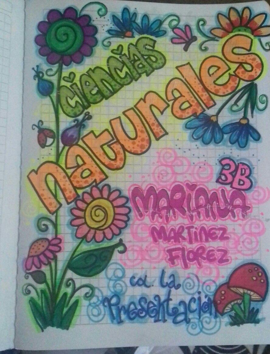 Pin De Yulissa Pedroza Ramos En Mi Aula Cuadernos Creativos Carátulas Para Cuadernos Caratulas Para Cuadernos Escolares