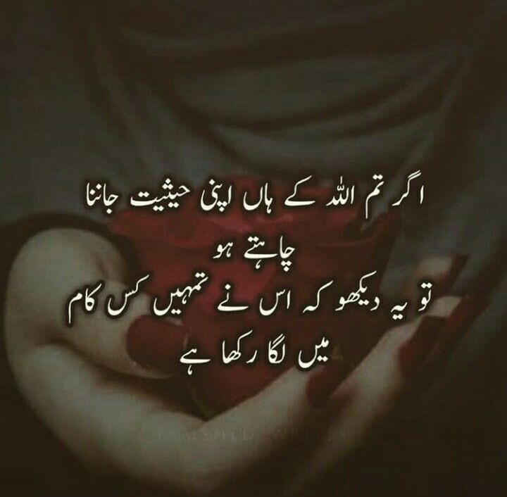 Quotes Deep Islamic: Pin By Samreen On Urdu Quotes