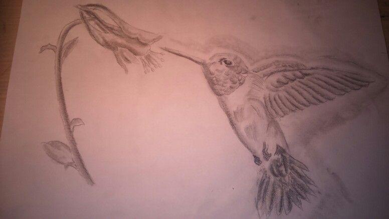 Ein Kolibri