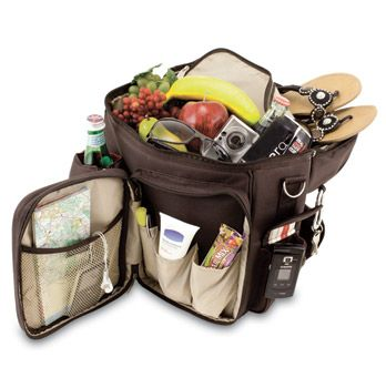 pic- nic back pack- I think this would be prefect for our zoo and park trips
