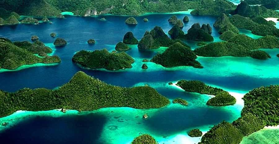 Terpopuler 30 Gambar Bunga Terindah Di Papua 11 Tujuan Wisata Indonesia Terkenal Yang Mendunia Download 16 Wisata Bunga Terindah D Di 2020 Pemandangan Alam Pantai