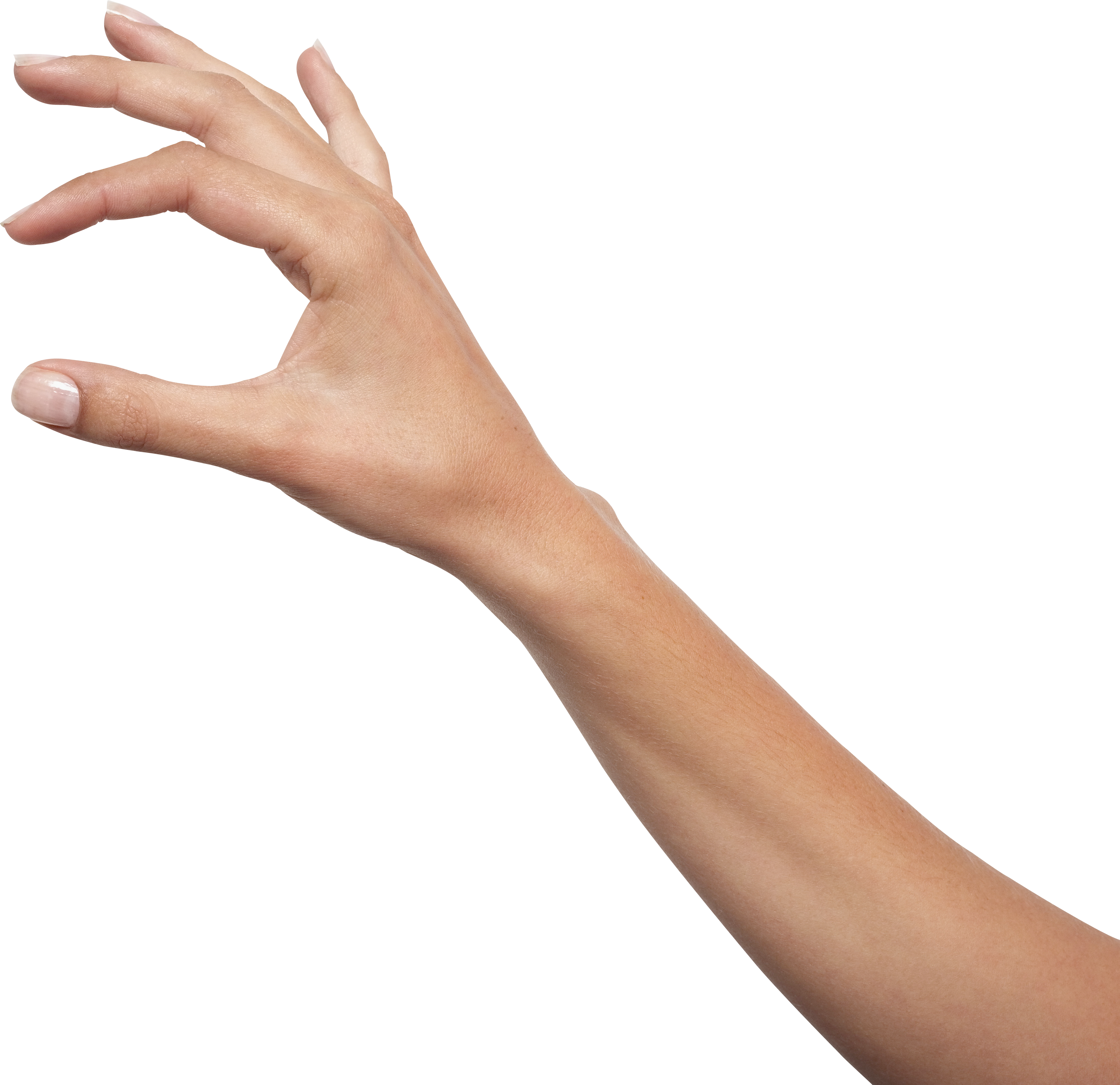 Hands Png Image Hand Images Png Images For Editing Hand Photo