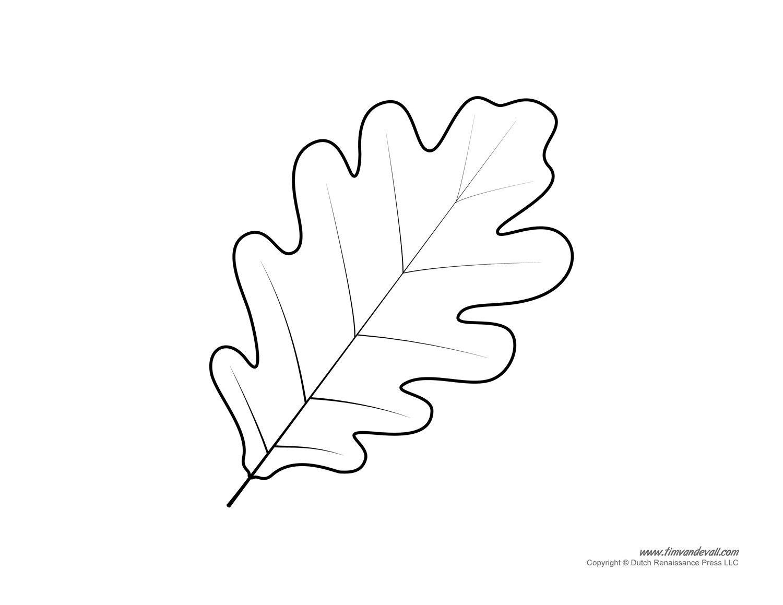Free Printable Oak Leaf Template Leaf Coloring Page Fall Leaves Coloring Pages Leaf Template