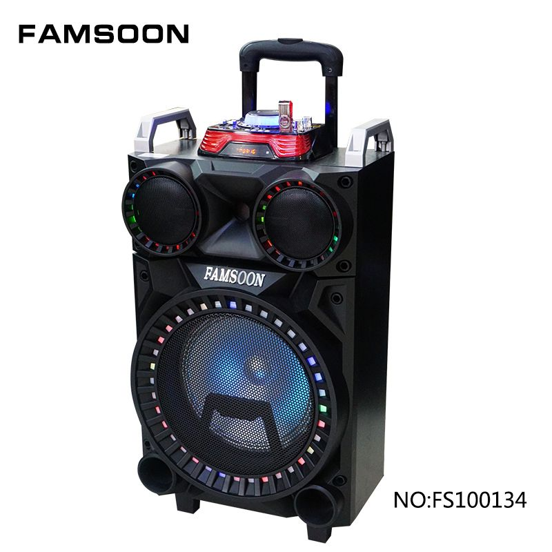 Famsoon 10 Inch Trolley Speaker Outdoor Party Portable Karaoke Speaker With Battery Outdoor Speakers Karaoke Speaker Bluetooth Speakers Portable