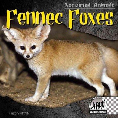 Fennec Foxes Fennec Fox Nocturnal Animals Fox